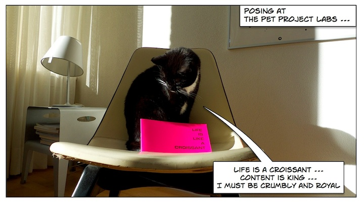 Posing at The Pet Project Labs ... 'Life is a croissant... Content is king... I must be crumbly and royal'